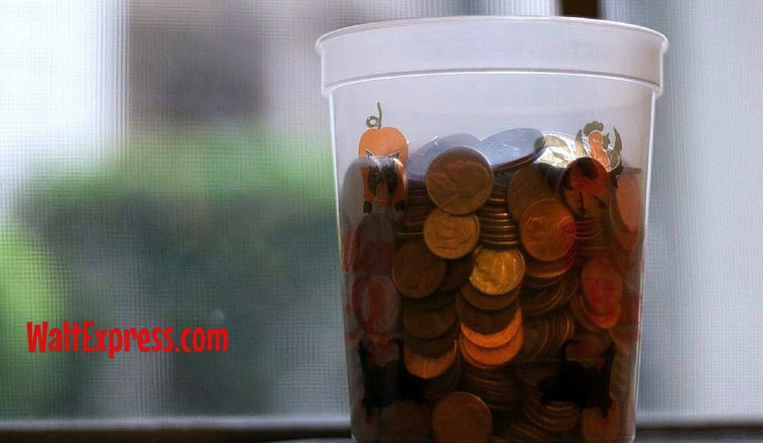How to Save Money at Disney Parks