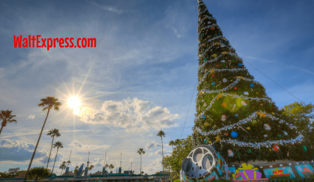 Breaking News: NEW Holiday Nighttime Show at Hollywood Studios