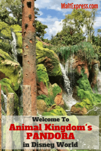 Welcome to Animal Kingdom's Newest Land: PANDORA